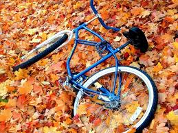 Fall 2013 Bicycle Rides